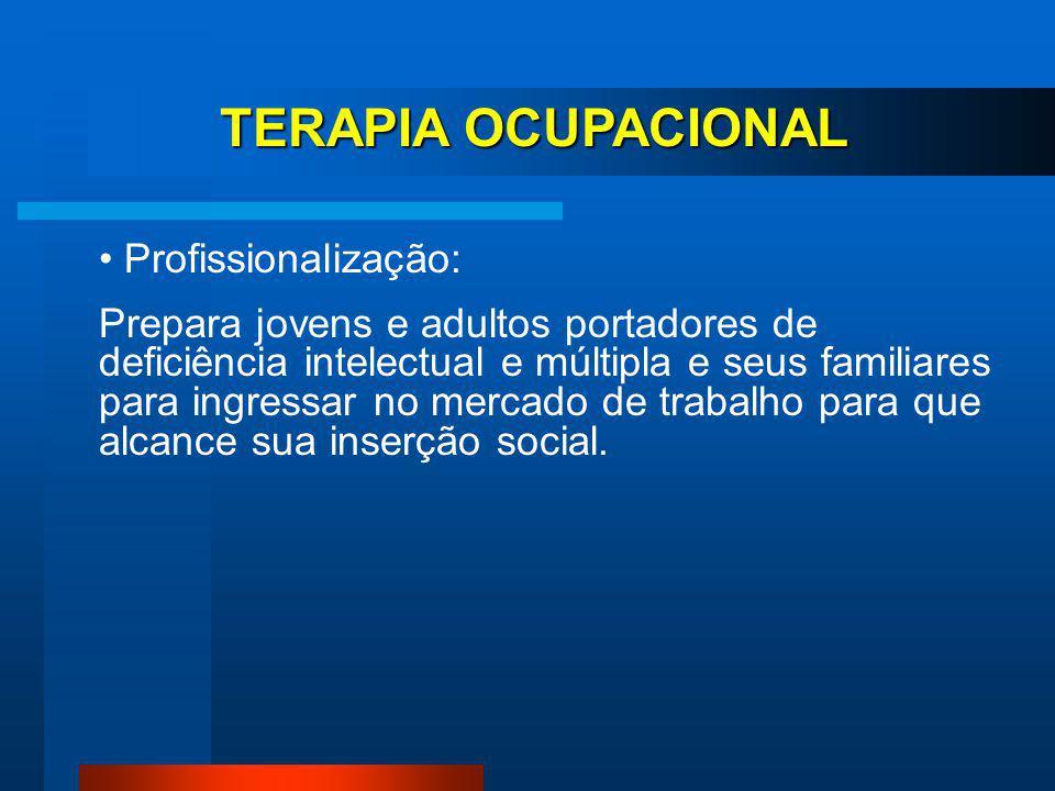 TERAPIA OCUPACIONAL Profissionalização: