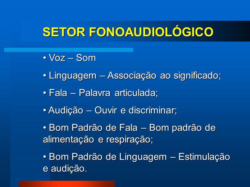 SETOR FONOAUDIOLÓGICO