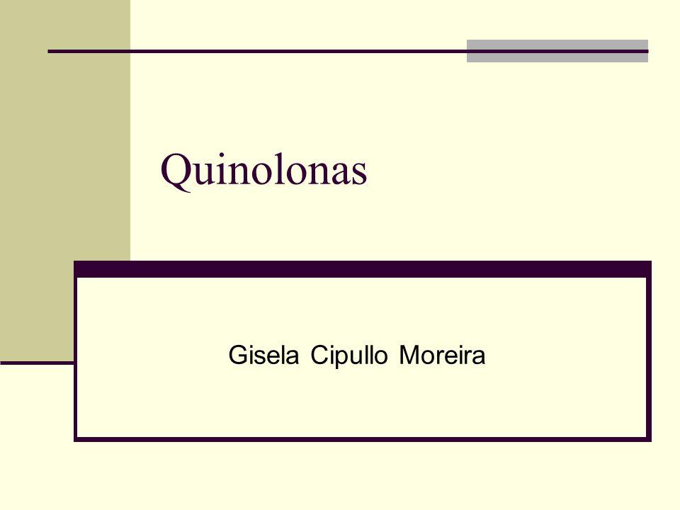 Gisela Cipullo Moreira