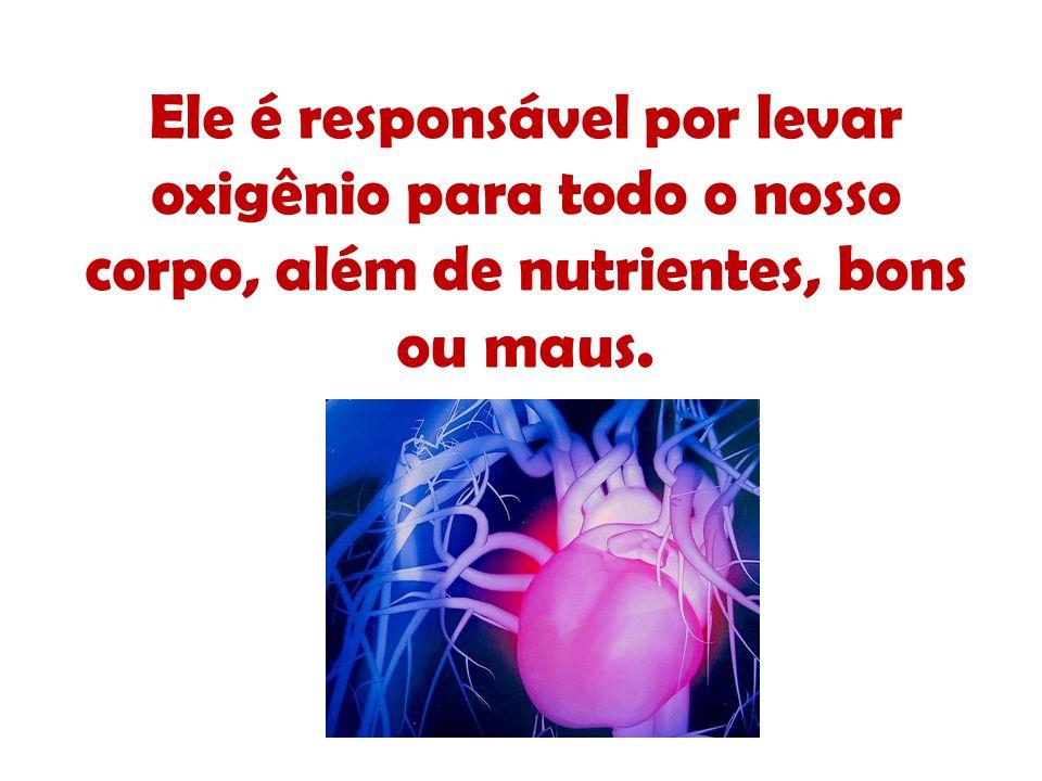 Ele é responsável por levar oxigênio para todo o nosso corpo, além de nutrientes, bons ou maus.