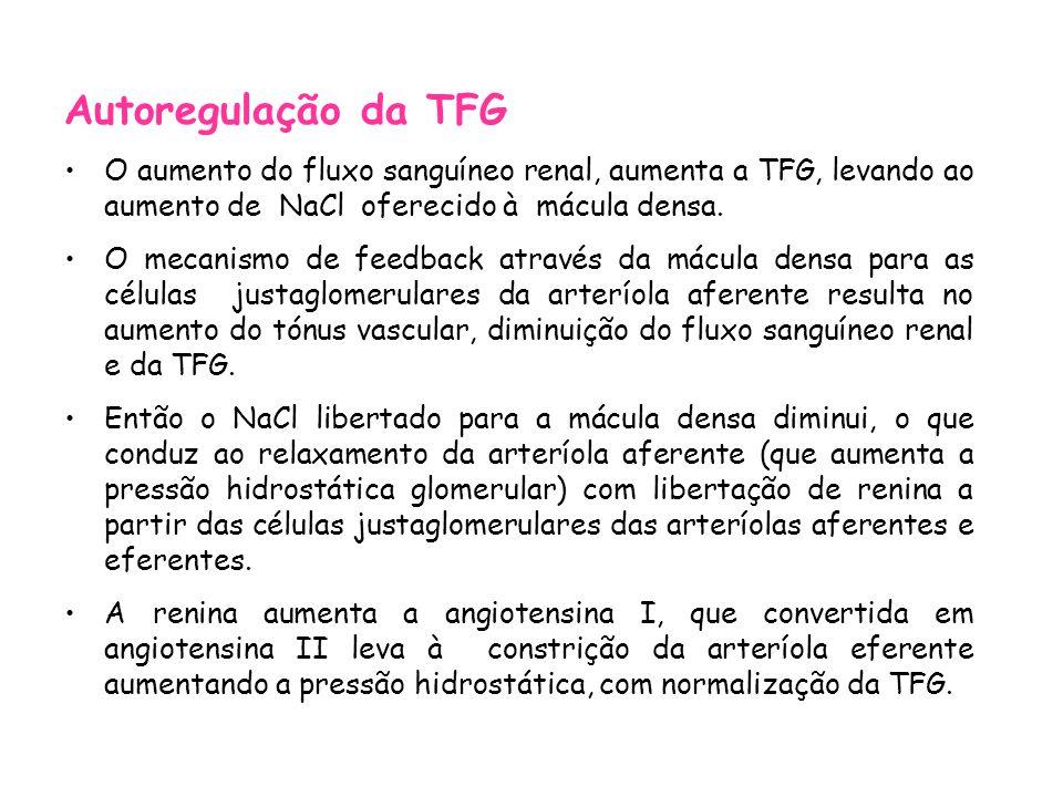 Autoregulação da TFG O aumento do fluxo sanguíneo renal, aumenta a TFG, levando ao aumento de NaCl oferecido à mácula densa.