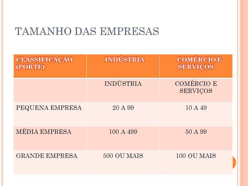 TAMANHO DAS EMPRESAS CLASSIFICAÇÃO (PORTE) INDÚSTRIA