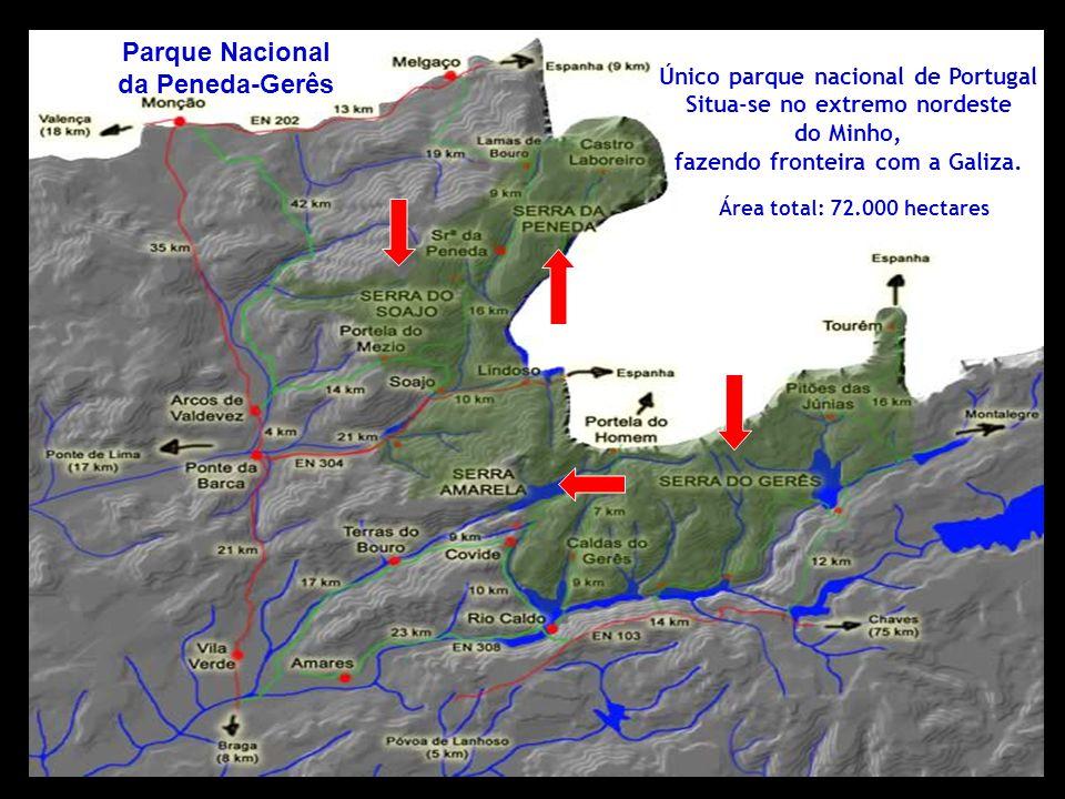 Único parque nacional de Portugal Situa-se no extremo nordeste