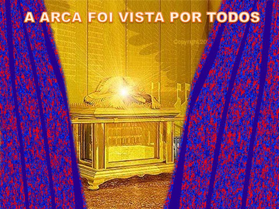 A ARCA FOI VISTA POR TODOS