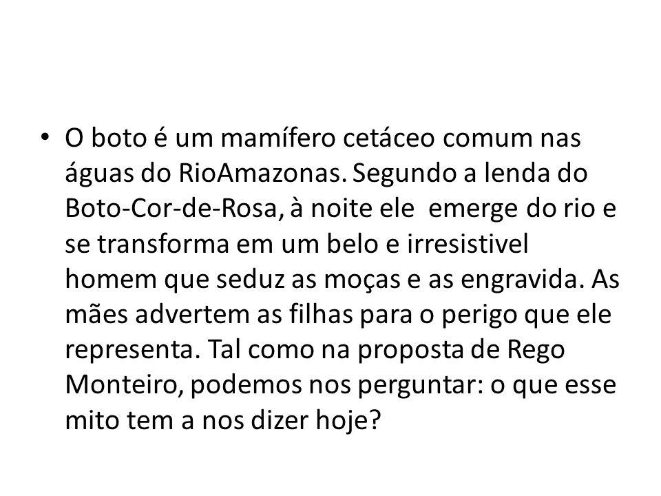 O boto é um mamífero cetáceo comum nas águas do RioAmazonas