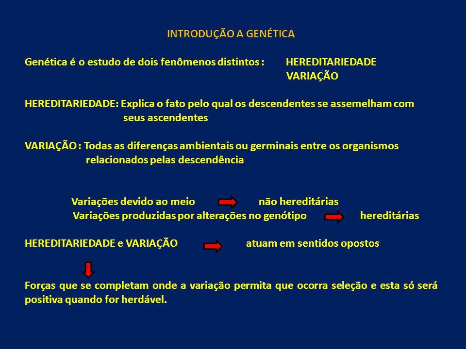 INTRODUÇÃO A GENÉTICA Genética é o estudo de dois fenômenos distintos : HEREDITARIEDADE. VARIAÇÃO.