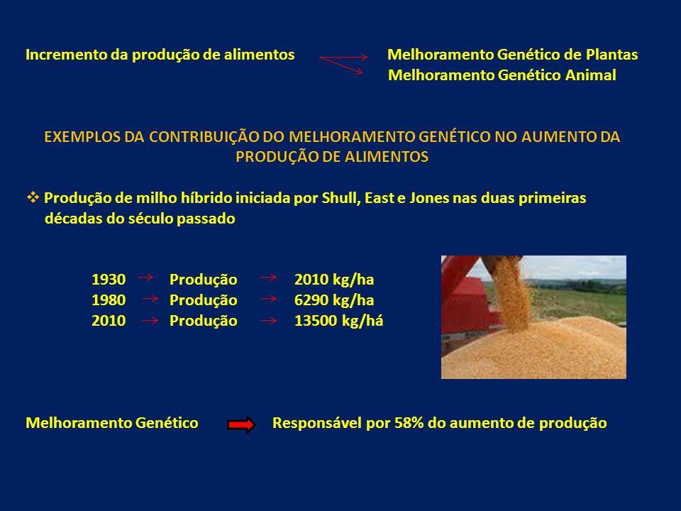 Incremento da produção de alimentos Melhoramento Genético de Plantas