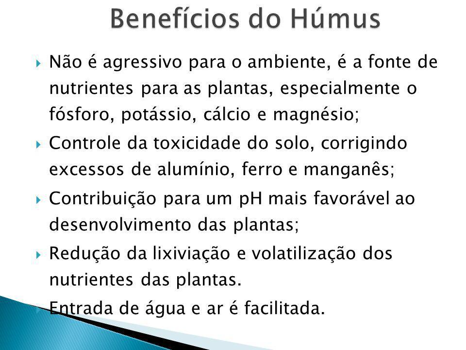 Benefícios do Húmus