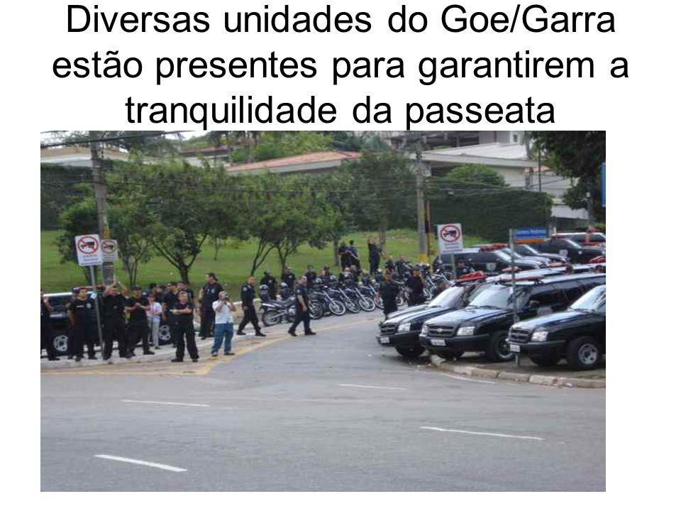Diversas unidades do Goe/Garra estão presentes para garantirem a tranquilidade da passeata
