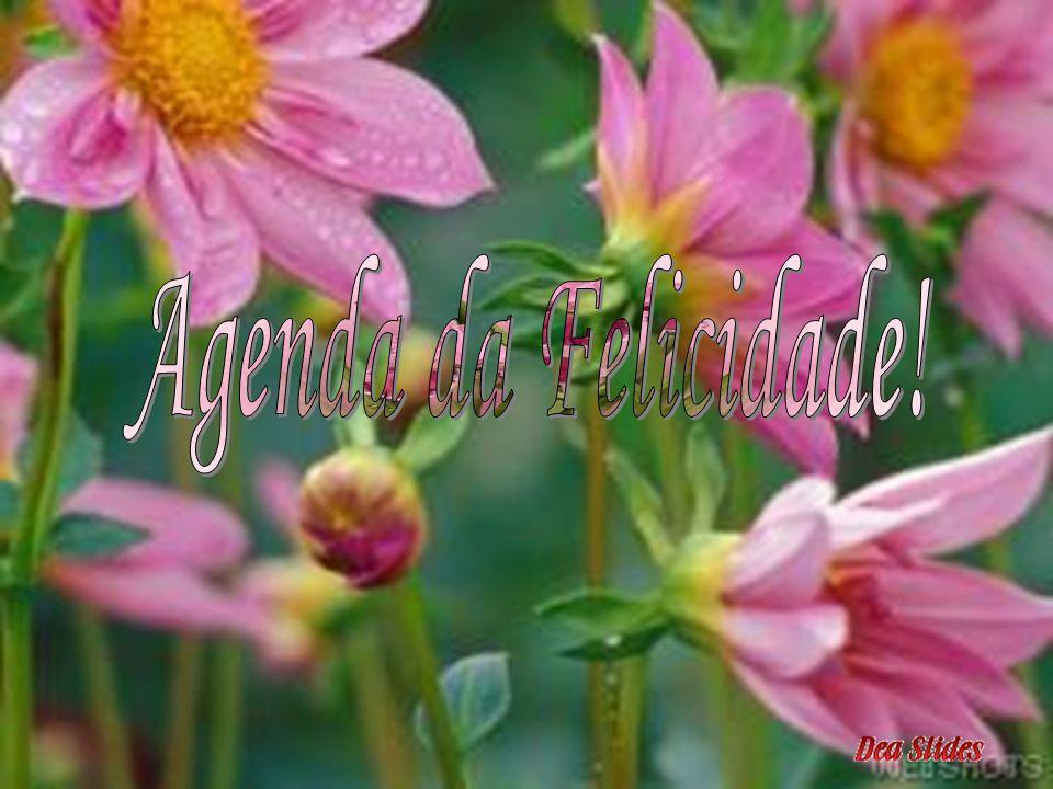 Agenda da Felicidade!