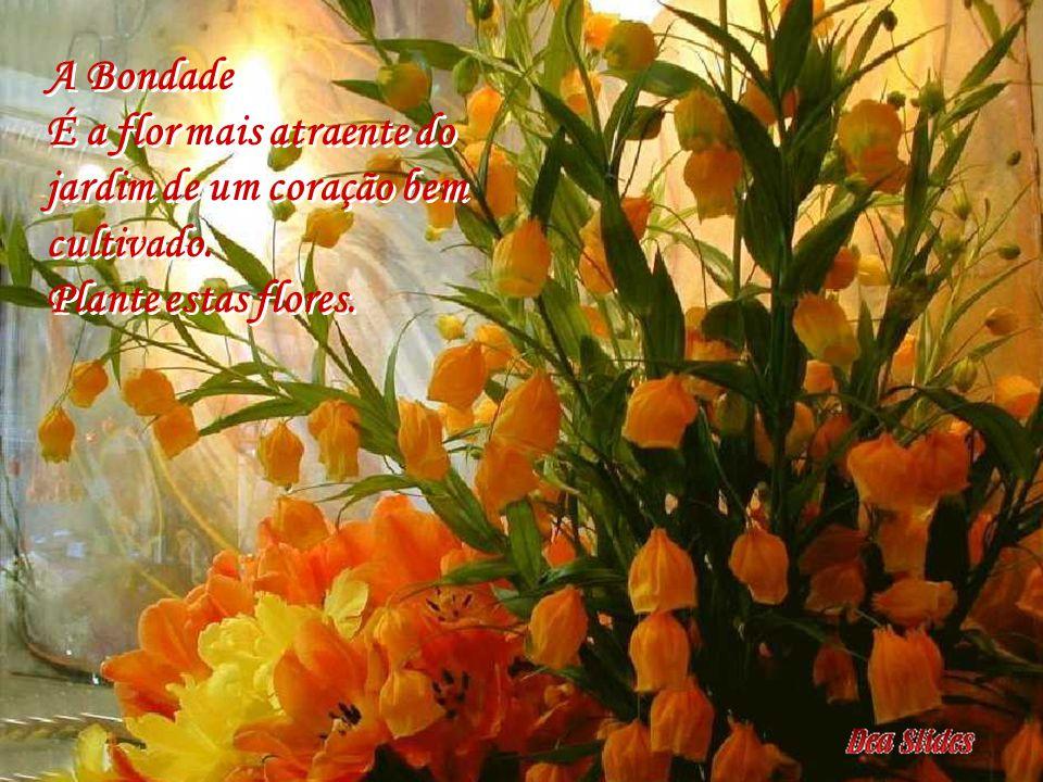 A Bondade É a flor mais atraente do jardim de um coração bem cultivado