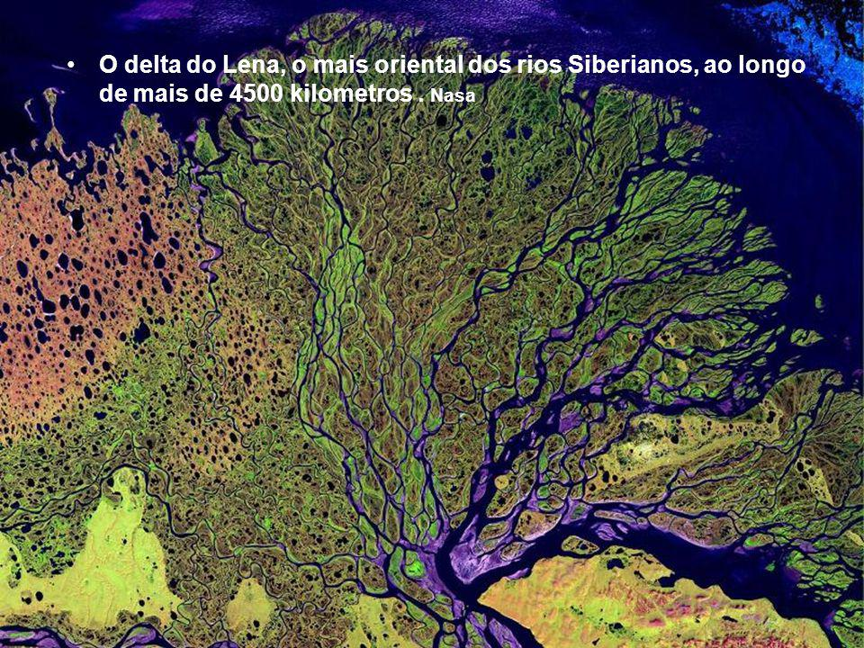 O delta do Lena, o mais oriental dos rios Siberianos, ao longo de mais de 4500 kilometros . Nasa