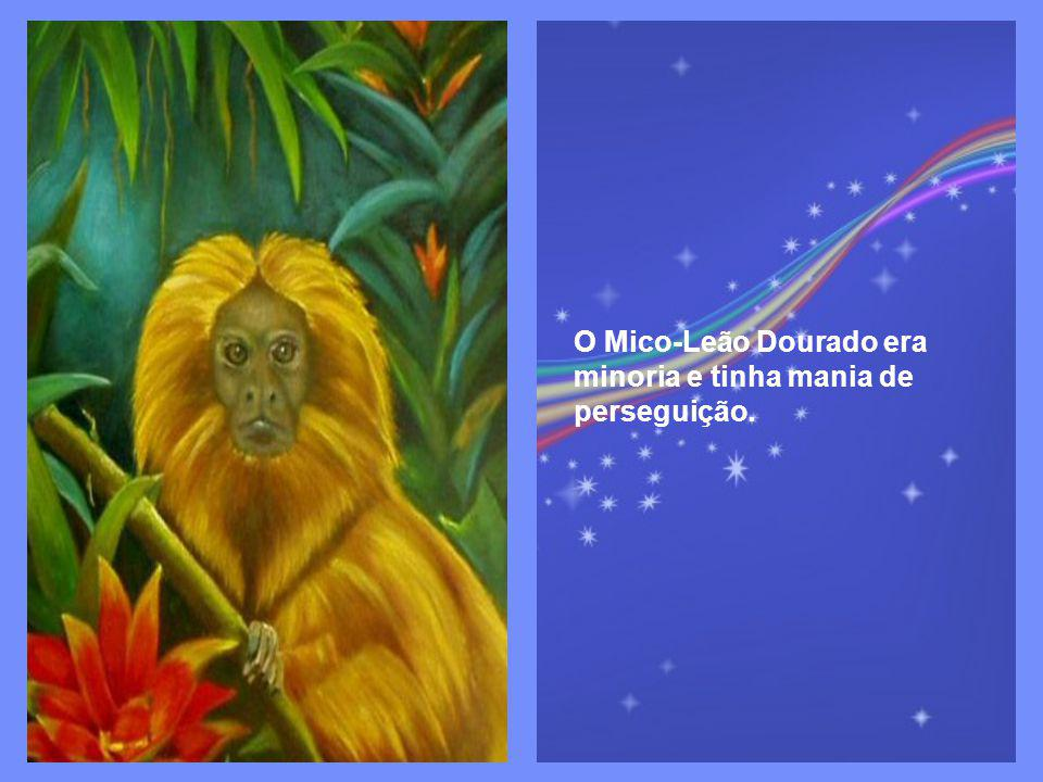 O Mico-Leão Dourado era minoria e tinha mania de perseguição.