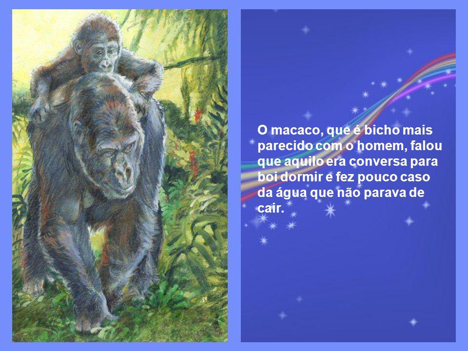 O macaco, que é bicho mais parecido com o homem, falou que aquilo era conversa para boi dormir e fez pouco caso da água que não parava de cair.
