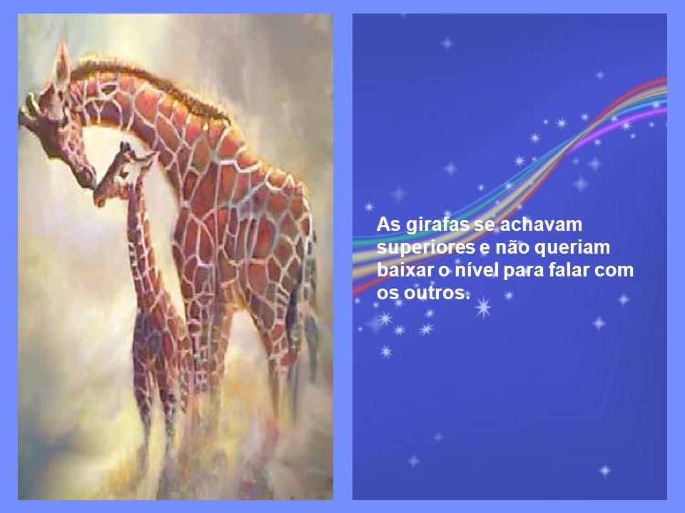 As girafas se achavam superiores e não queriam baixar o nível para falar com os outros.