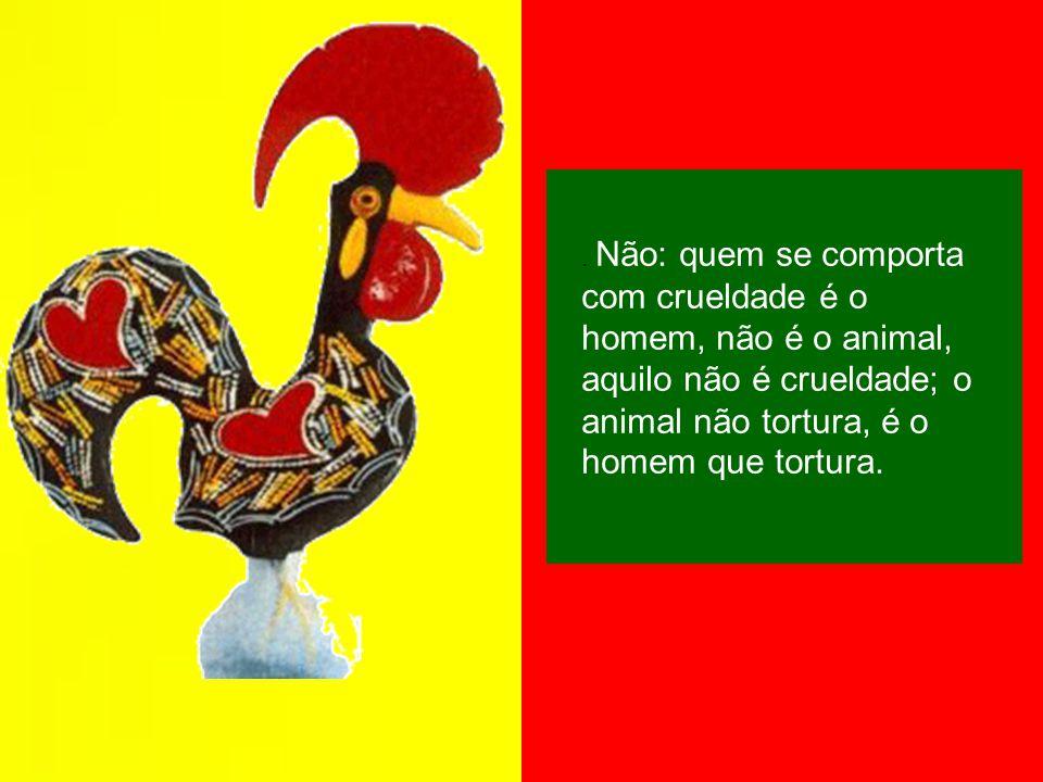 . Não: quem se comporta com crueldade é o homem, não é o animal, aquilo não é crueldade; o animal não tortura, é o homem que tortura.