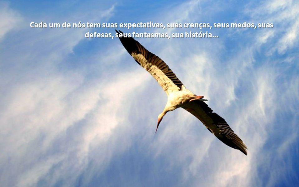 Cada um de nós tem suas expectativas, suas crenças, seus medos, suas defesas, seus fantasmas, sua história...