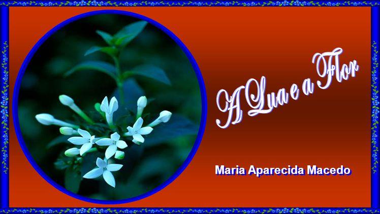 Maria Aparecida Macedo