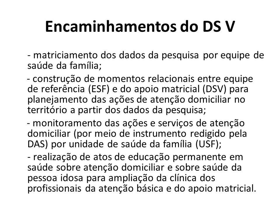 Encaminhamentos do DS V