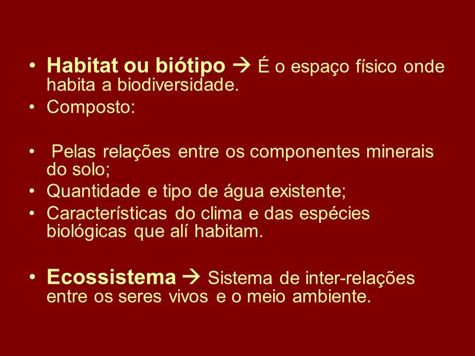 Habitat ou biótipo  É o espaço físico onde habita a biodiversidade.