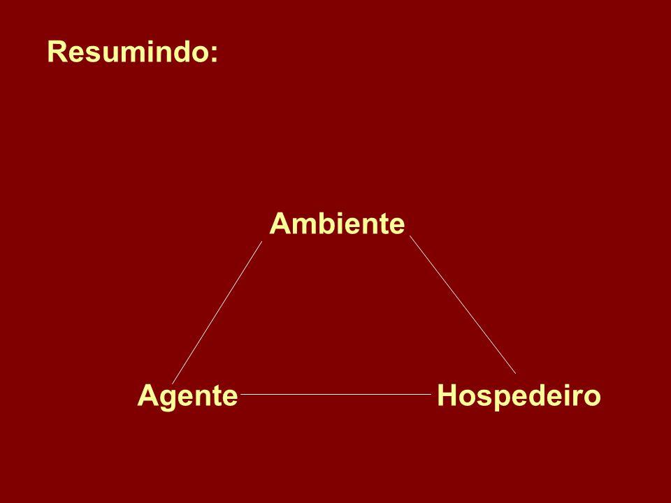 Resumindo: Ambiente Agente Hospedeiro