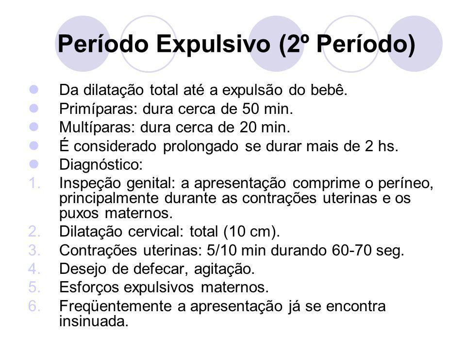 Período Expulsivo (2º Período)