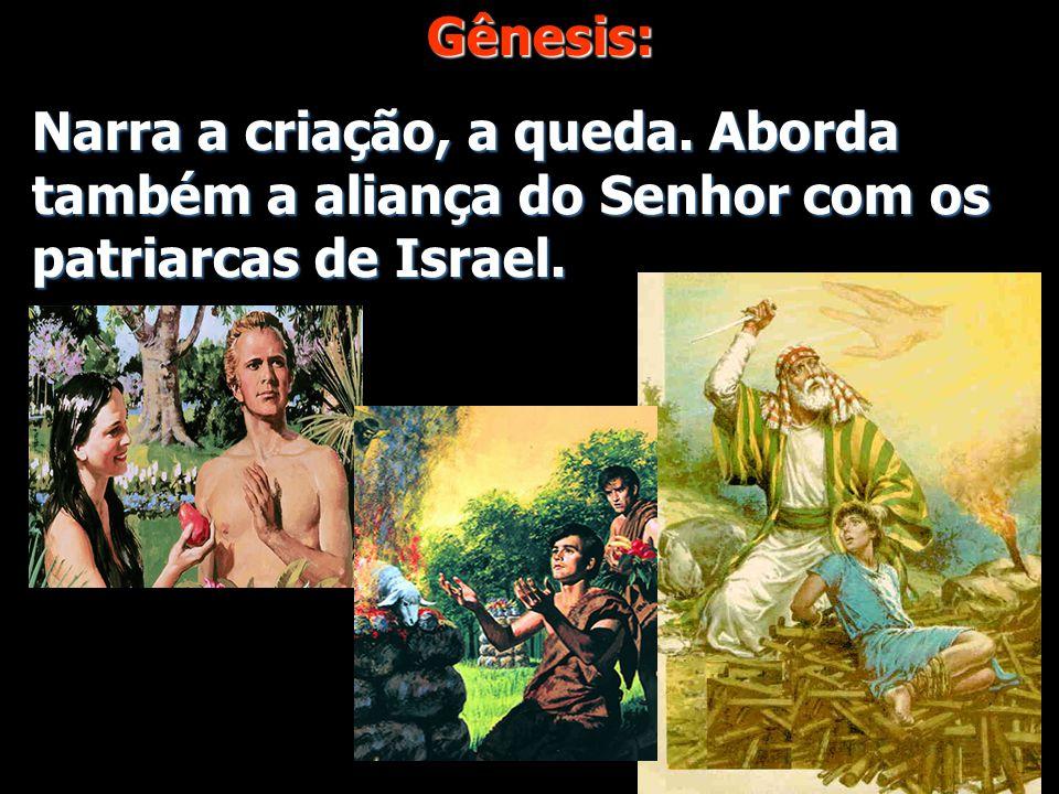 Gênesis: Narra a criação, a queda. Aborda também a aliança do Senhor com os patriarcas de Israel.