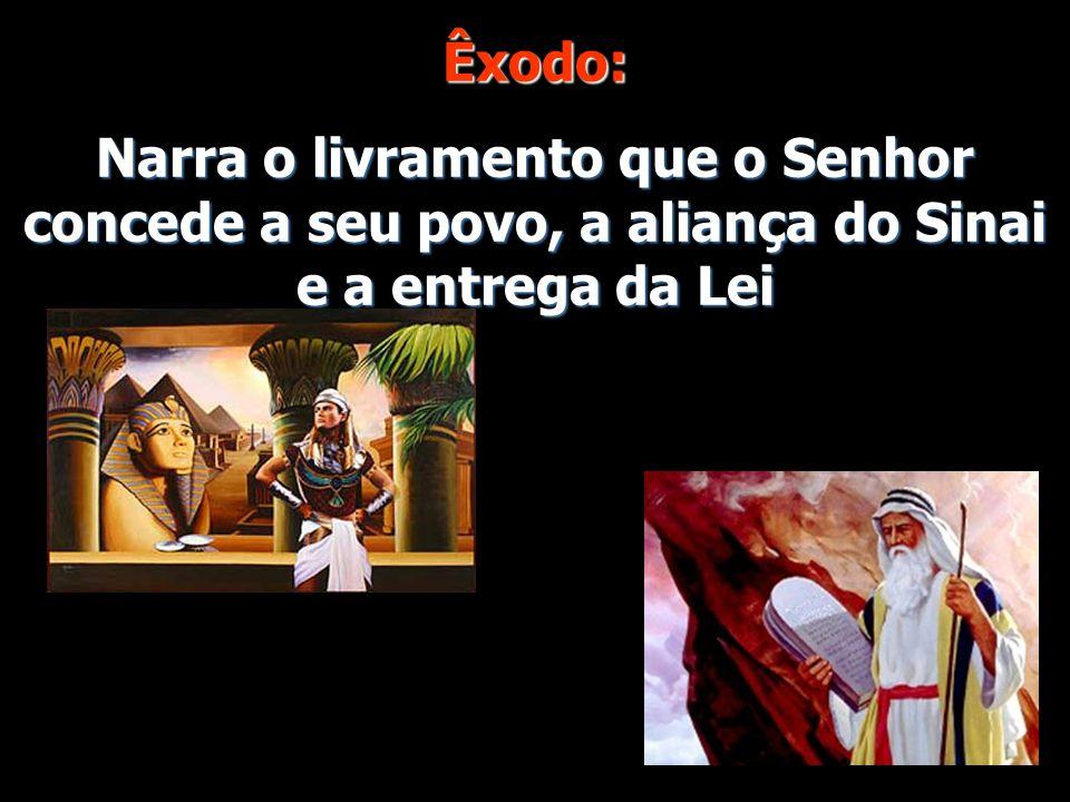 Êxodo: Narra o livramento que o Senhor concede a seu povo, a aliança do Sinai e a entrega da Lei