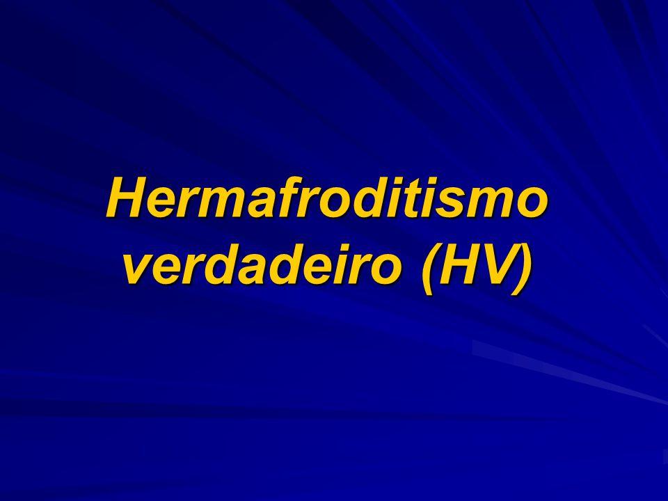 Hermafroditismo verdadeiro (HV)