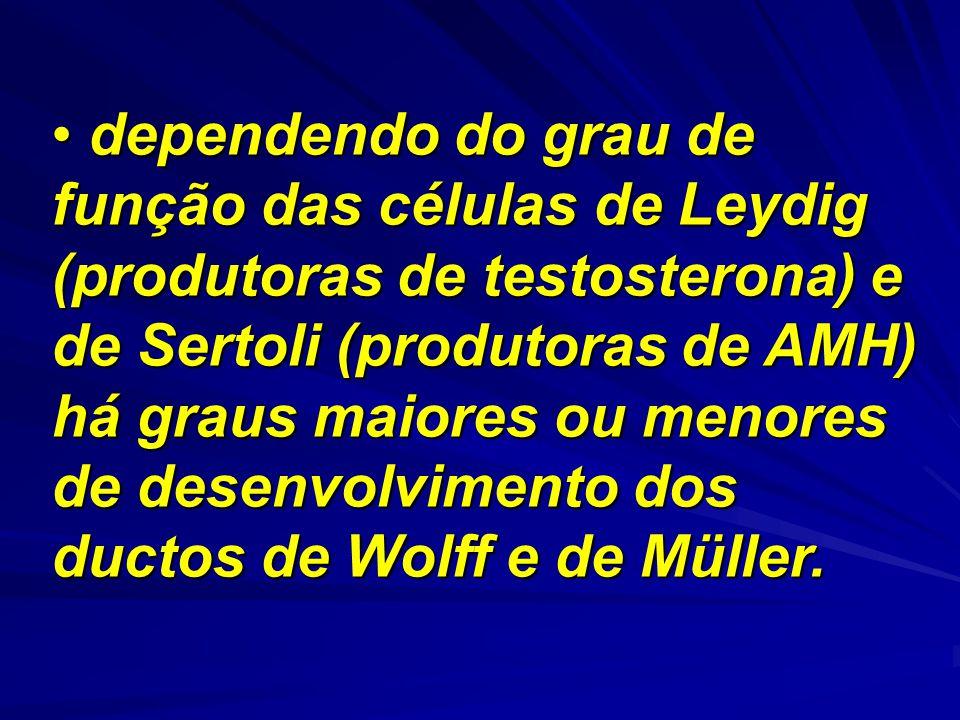 dependendo do grau de função das células de Leydig (produtoras de testosterona) e de Sertoli (produtoras de AMH) há graus maiores ou menores de desenvolvimento dos ductos de Wolff e de Müller.