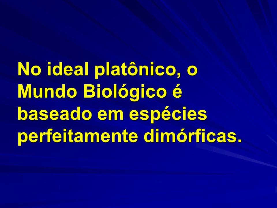 No ideal platônico, o Mundo Biológico é baseado em espécies perfeitamente dimórficas.