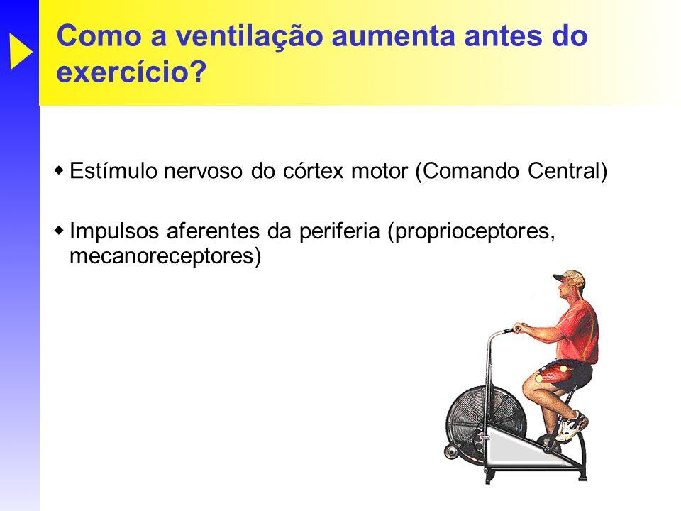 Como a ventilação aumenta antes do exercício