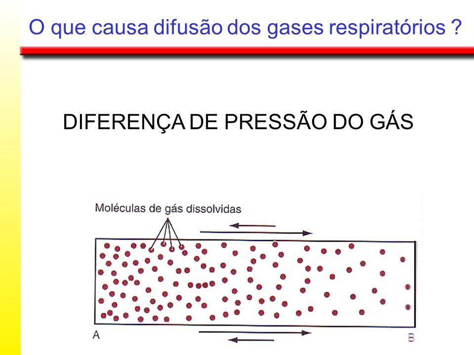 O que causa difusão dos gases respiratórios