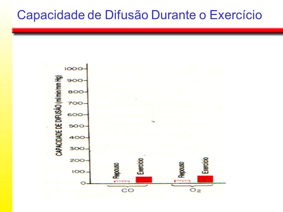 Capacidade de Difusão Durante o Exercício