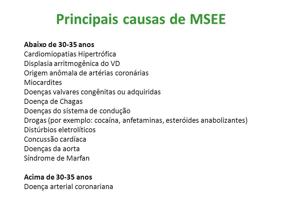 Principais causas de MSEE