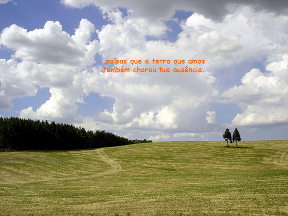 ...saibas que a terra que amas também chorou tua ausência.