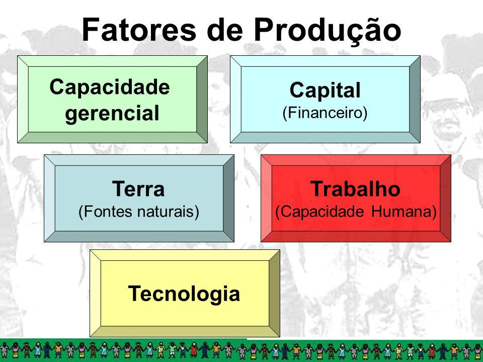Fatores de Produção Capacidade gerencial Capital Terra Trabalho