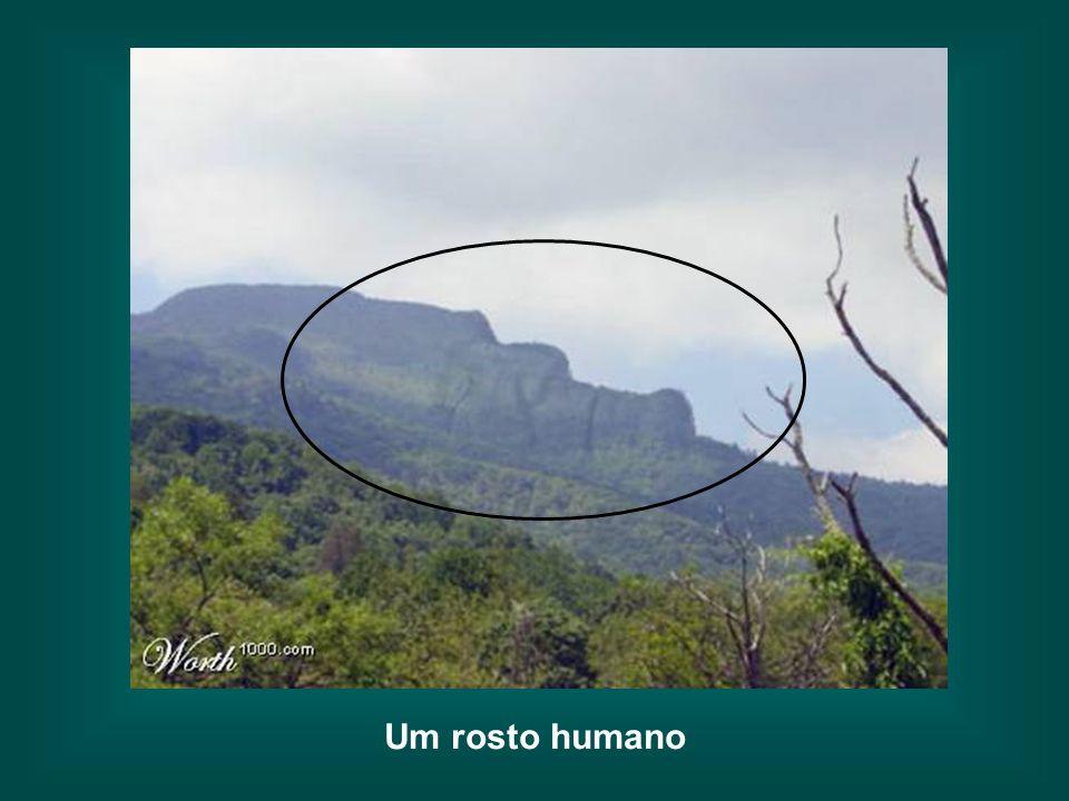 Um rosto humano