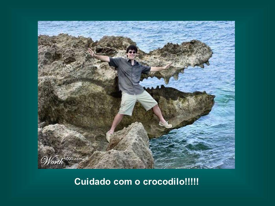 Cuidado com o crocodilo!!!!!