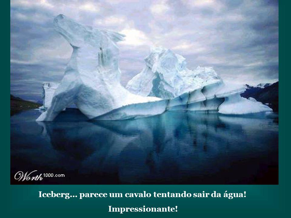 Iceberg… parece um cavalo tentando sair da água!