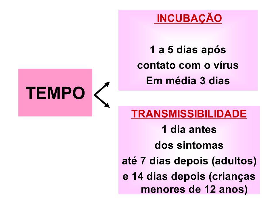 TEMPO INCUBAÇÃO 1 a 5 dias após contato com o vírus Em média 3 dias