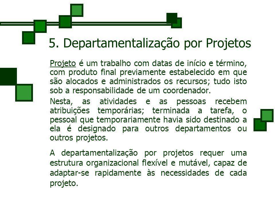5. Departamentalização por Projetos