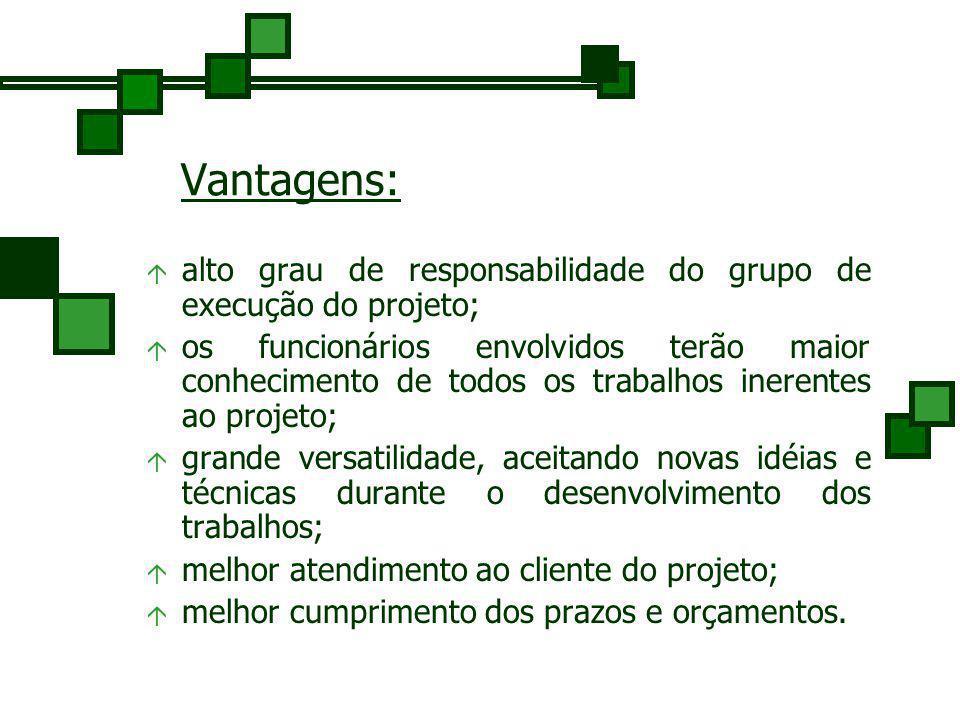 Vantagens: alto grau de responsabilidade do grupo de execução do projeto;