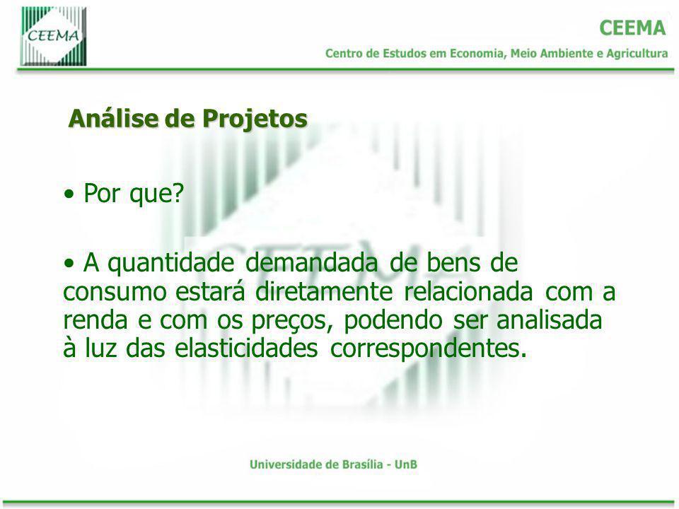 Análise de Projetos Por que