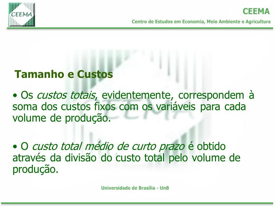 Tamanho e Custos Os custos totais, evidentemente, correspondem à soma dos custos fixos com os variáveis para cada volume de produção.