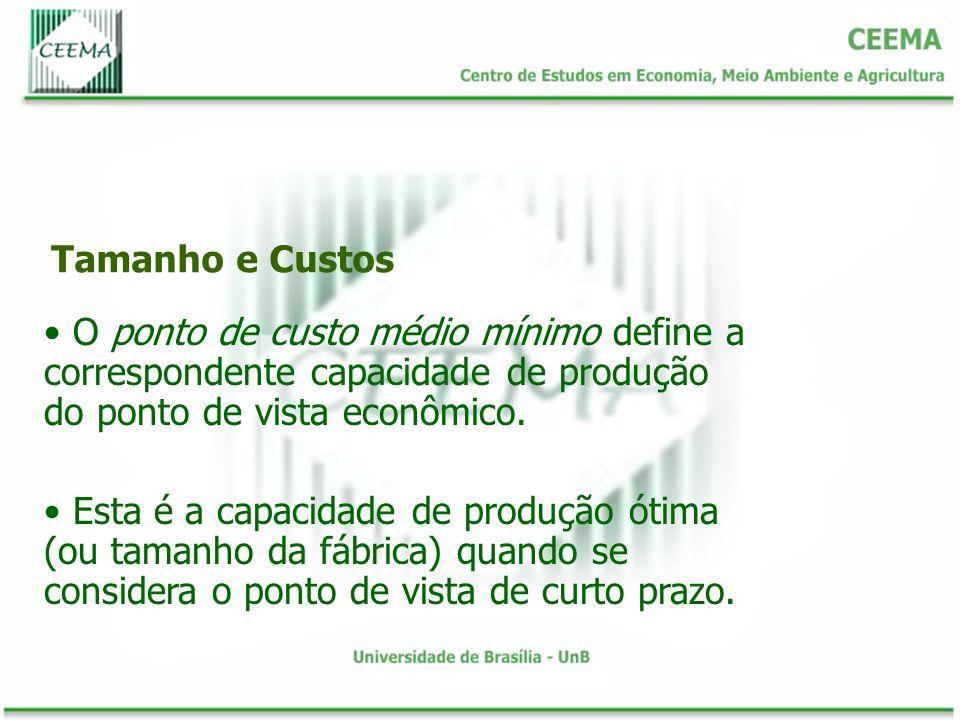 Tamanho e Custos O ponto de custo médio mínimo define a correspondente capacidade de produção do ponto de vista econômico.
