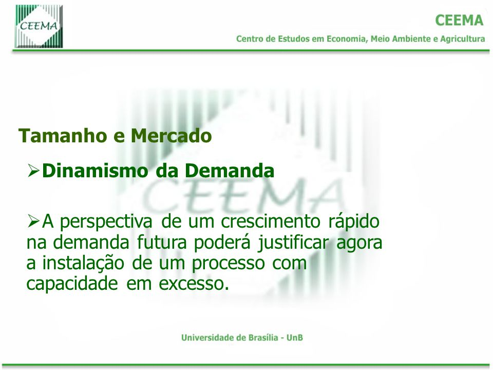 Tamanho e Mercado Dinamismo da Demanda.