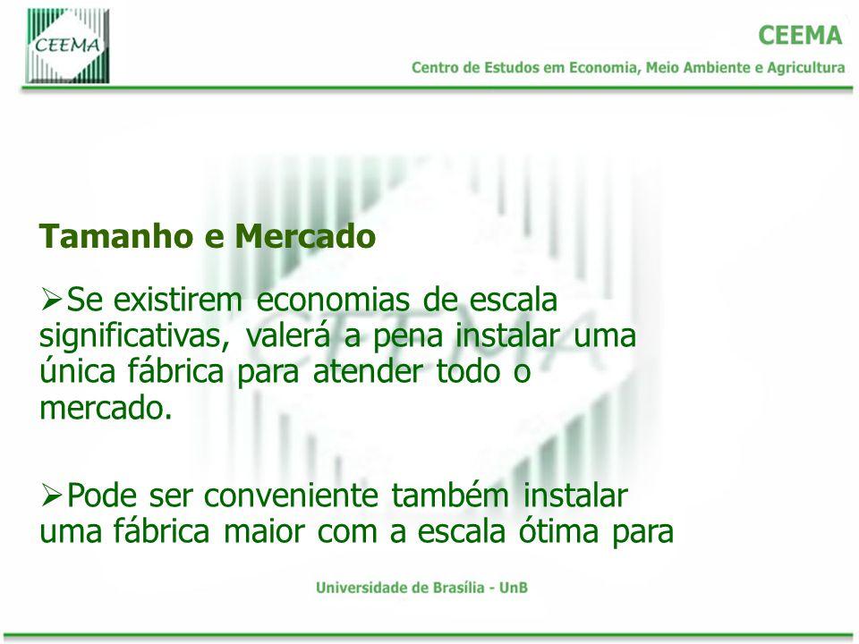 Tamanho e Mercado Se existirem economias de escala significativas, valerá a pena instalar uma única fábrica para atender todo o mercado.