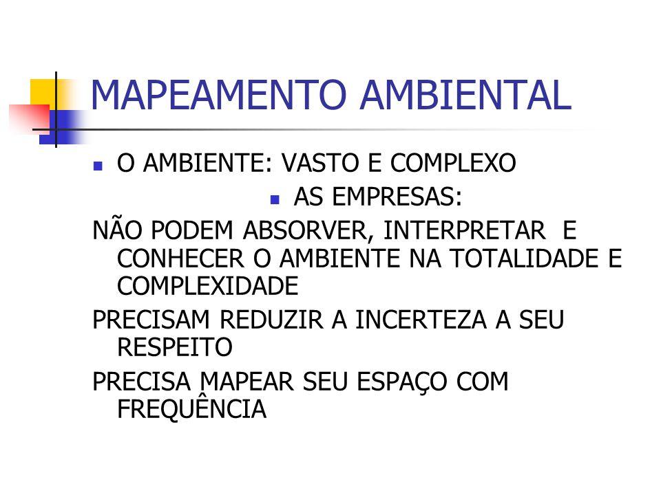 MAPEAMENTO AMBIENTAL O AMBIENTE: VASTO E COMPLEXO AS EMPRESAS: