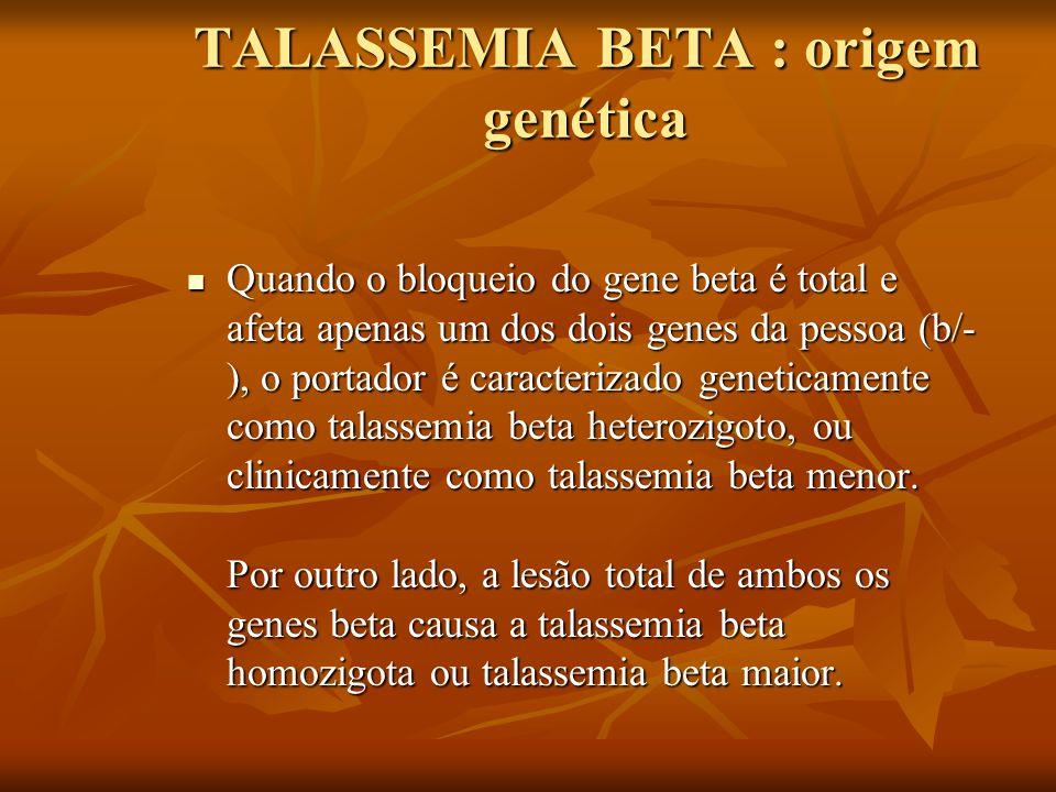 TALASSEMIA BETA : origem genética